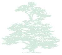Parkers Landscapes & Construction Ltd